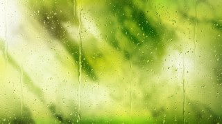 Green and White Water Drop Background Image