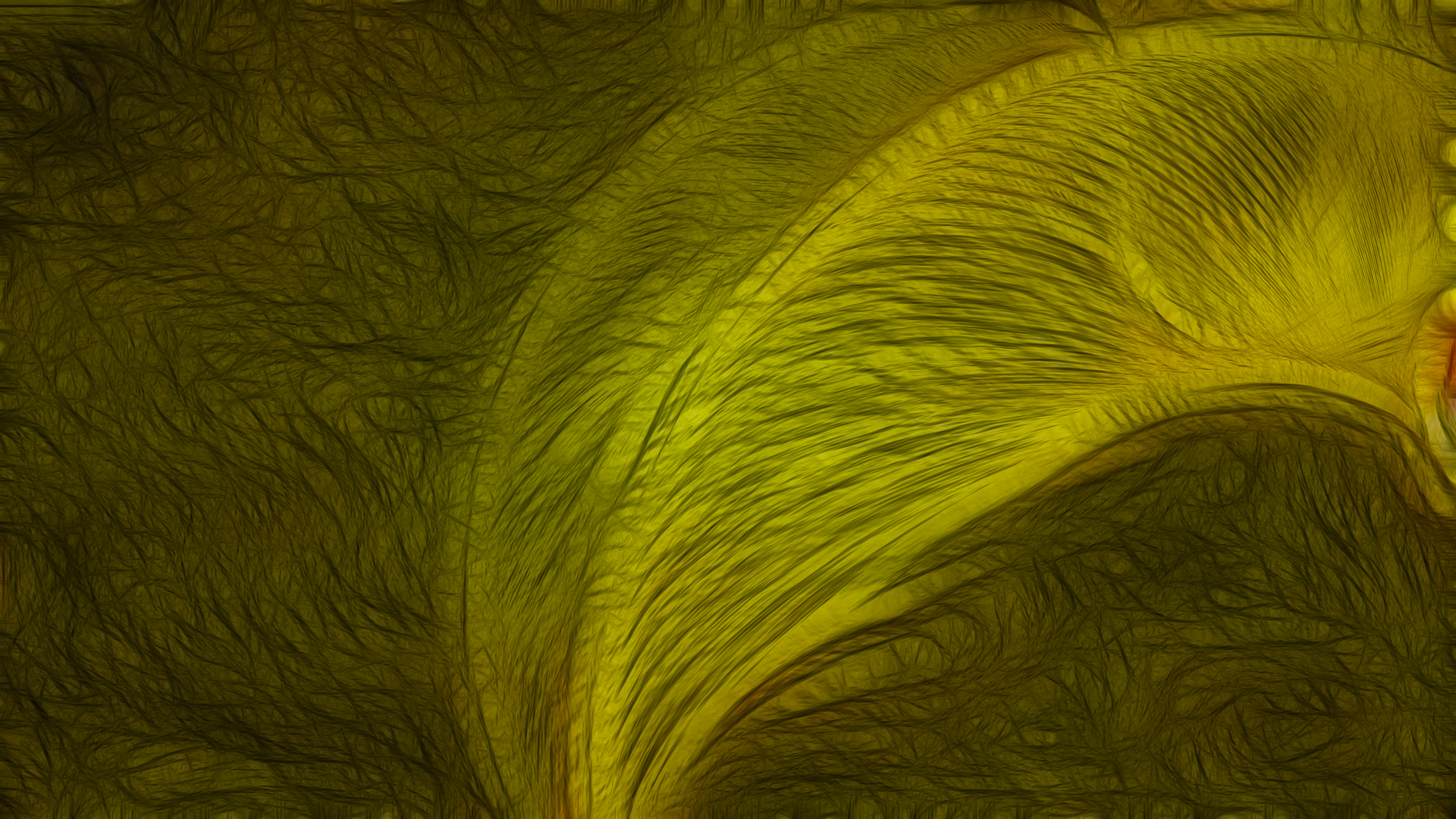 Black and Yellow Texture Background Image