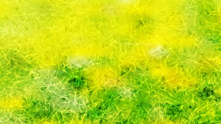 Abstract Green and Yellow Texture Background Image