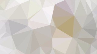 Abstract Light Grey Polygon Background Template Design