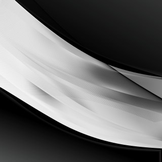 Abstract Black and Grey Wave Business Background Vector Image