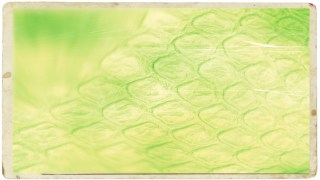 Green and Yellow Antique Background Image