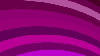 Purple Curved Stripes Background Vector Image