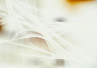 Abstract Beige Fractal Wallpaper Image