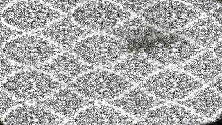 Black and White Ornament Pattern Texture Background Image