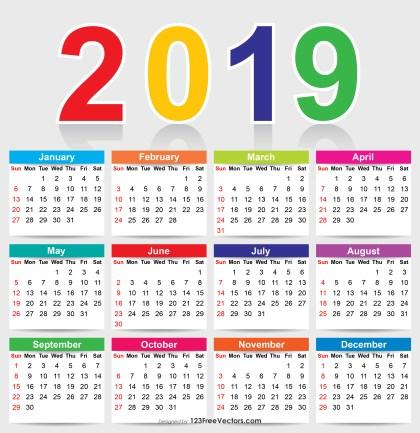 Colorful 2019 Calendar Vector