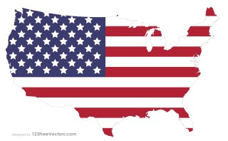USA Flag Map Vector Image