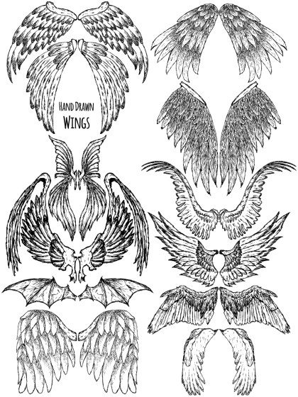 Hand Drawn Wings Vector and Photoshop Brush Pack-06