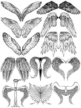 Hand Drawn Wings Vector and Photoshop Brush Pack-09