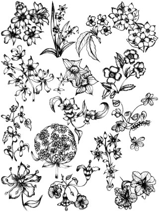 Hand Drawn Sketch Flowers Vector and Photoshop Brush Pack-04