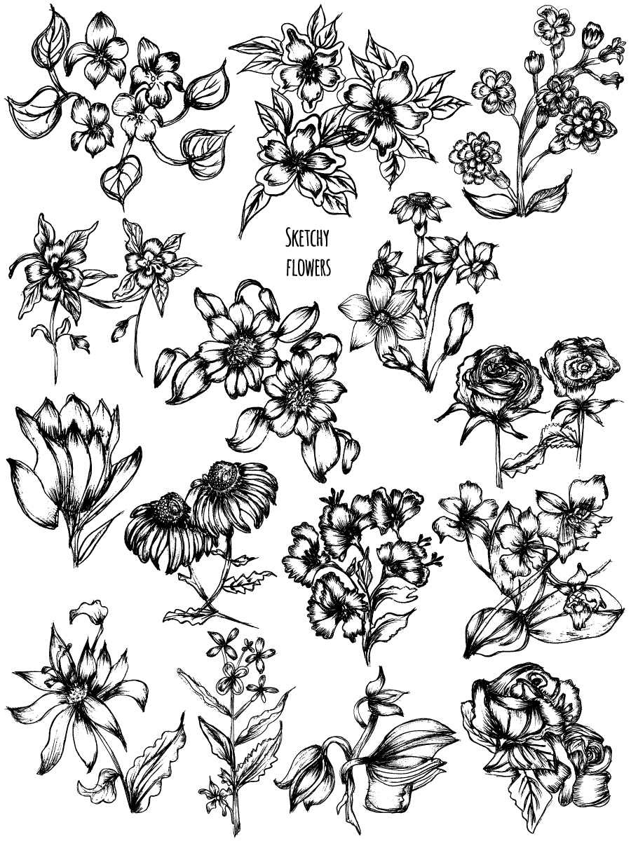 Hand Drawn Sketch Flowers Vector and Photoshop Brush Pack,07