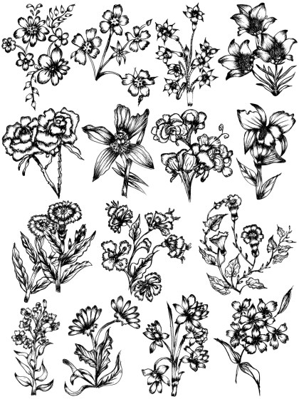 Hand Drawn Sketch Flowers Vector and Photoshop Brush Pack-08