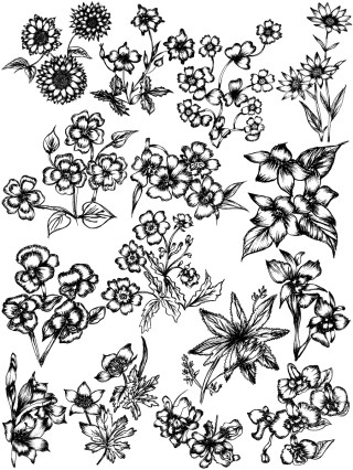 Hand Drawn Sketch Flowers Vector and Photoshop Brush Pack-09