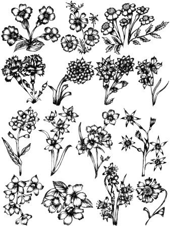 Hand Drawn Sketch Flowers Vector and Photoshop Brush Pack-10