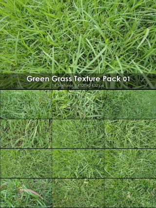 Green Grass Texture Pack-01