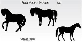 Horse Silhouettes Free Vector