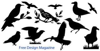 Birds Silhouette Free Vector