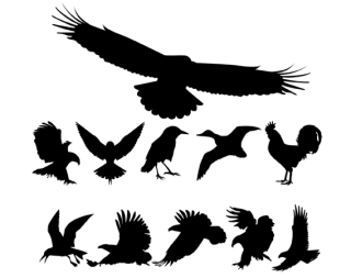 Birds Silhouettes free vector