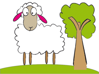Cute sheep free vector