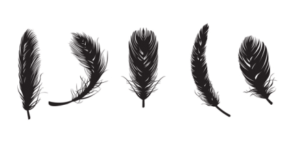 Feather free vectors