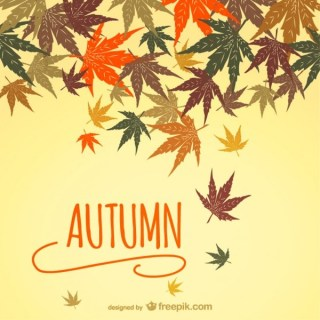 Autumn Background with Leaves Free Vector