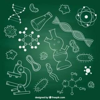Biology Elements on Chalkboard Free Vector
