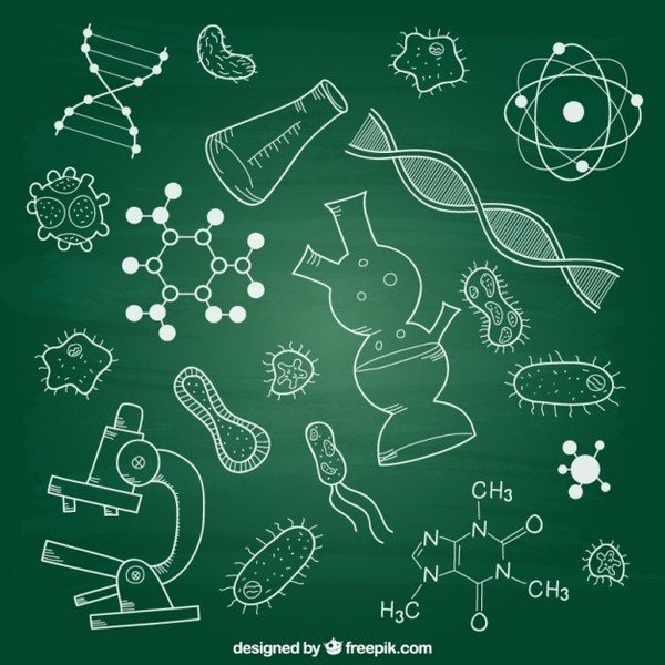 Biology Elements on Chalkboard Free Vector
