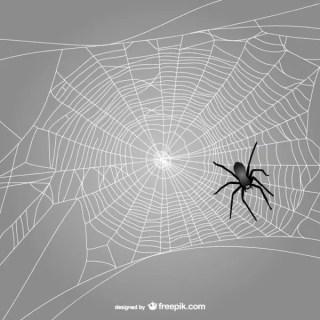 Black Spider Web Free Vector