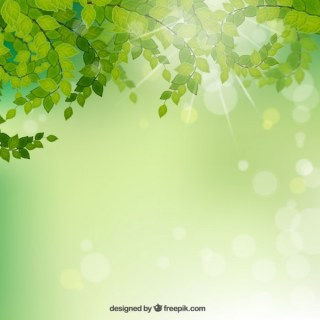 Branches with Green Leaves Background Free Vector