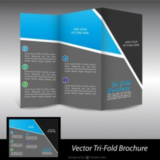 Brochure Free Graphics Free Vector