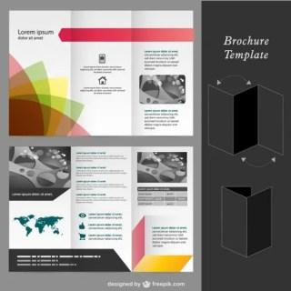 Brochure Mock-Up Template Free Vector