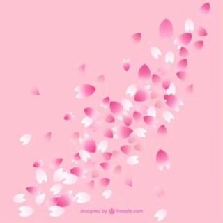 Cherry Blossom Petals Free Vector