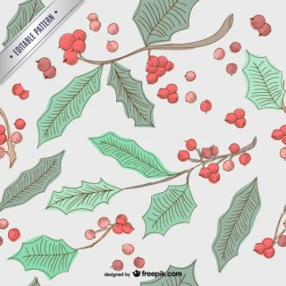 Christmas Holly Pattern Free Vector