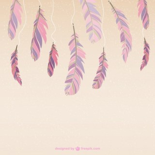 Colour Feathers Free Vector