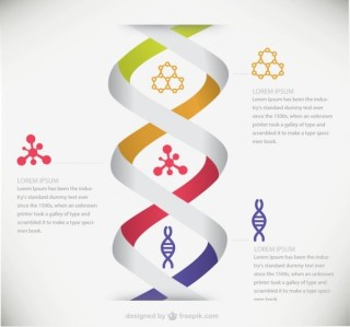 Dna Medical Infographic Free Vector