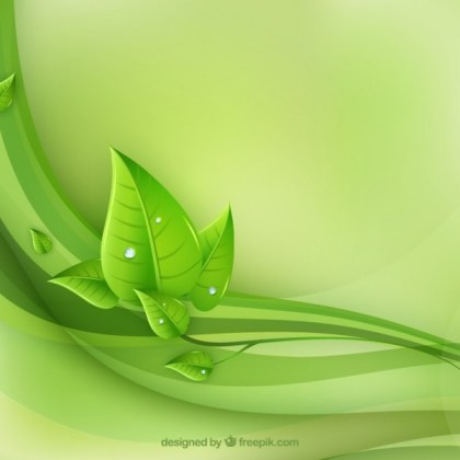 Eco Leaves and Green Wave Free Vector