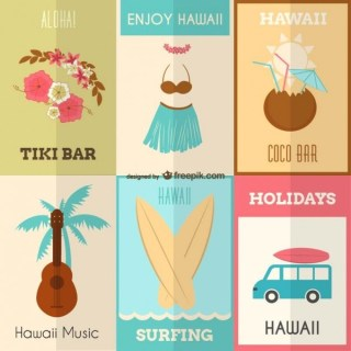 Enjoy Hawaii Set Free Vector