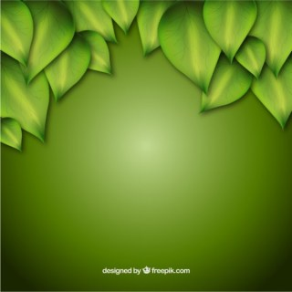 Green Background with Leaves Free Vector
