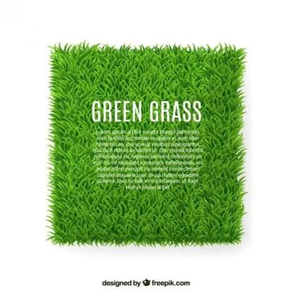 Green Grass Banner Free Vector