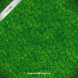 Green Grass Texture Free Vector