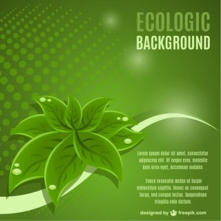 Green Leaf Background  Free Vector