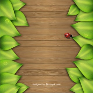 Leaves on Wooden Background Free Vector