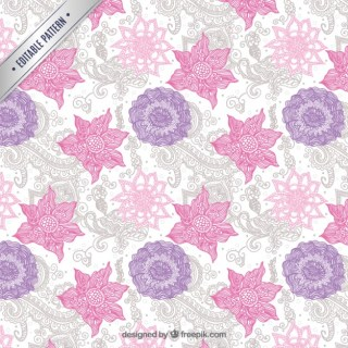 Paisley Pattern Free Vector