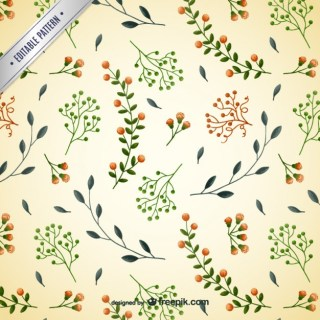 Pattern with Delicate Flowers Free Vector