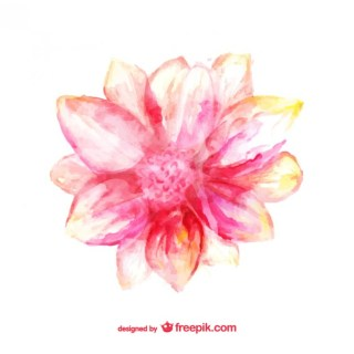 Pink Flower Watercolor Card Free Vector