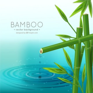 Realistic Bamboo Background Free Vector