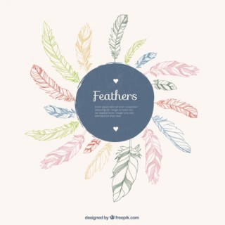 Sketchy Feathers Background Free Vector