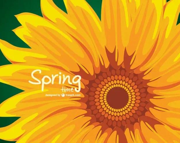 Sunflower Illustration Free Vector