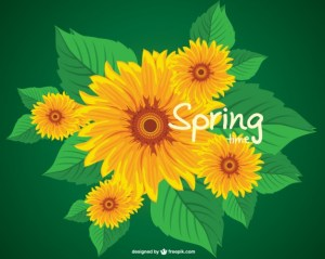 Sunflower Spring Free Vector