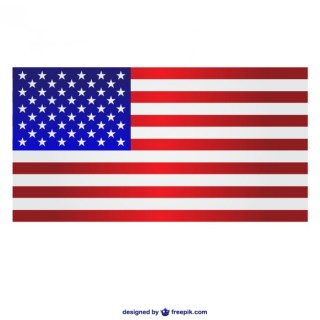 Usa Free Flag Template Free Vector